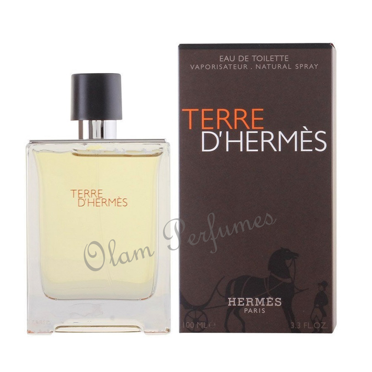 Hermes Terre D'Hermes Eau de Toilette Spray 3.3oz 100ml